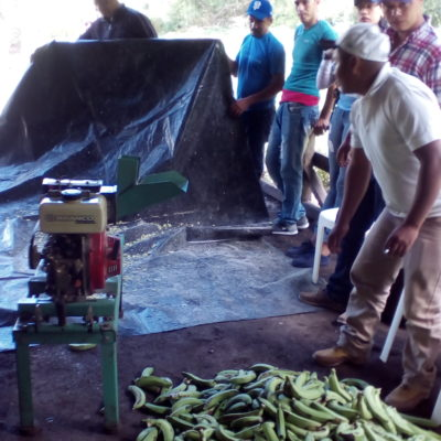 1. Elaboracion de yogurt a base de bananos verdes_taller cerdos
